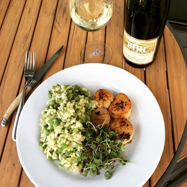 Scallops with Spring Pea Risotto